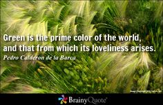 """""""Green is the prime color of the world, and that from which its loveliness arises.""""  Pedro Calderon de la Barca"""
