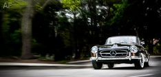 Mercedes-Benz 190 SL Roadster. Photo kindly provided by Royce Rumsey.