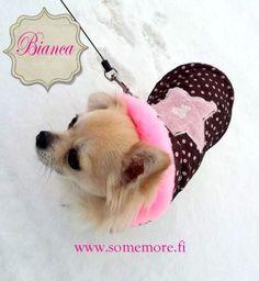 #Chihuahua #princess #wintercoat  www.somemore.fi