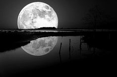 Full Moon Art: Moon rise over the water.