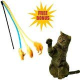 Equipt4 LLC @ Amazon.com: Pet Fit For Life Interactive Cat Toy see it at www.equipt4.com