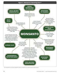 Monsanto Isn't on you side or looking out for you! Monsanto is out for your money! I'm against Monsanto, Toxic Food and GMO's! Gmo Facts, Bon Courage, Genetically Modified Food, Biotechnology, Health And Wellness, Holistic Nutrition, Health Tips, Healthy Living, Instagram