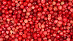 Klein aber oho! #cowberry #difference #cranberry #facts #diduknow #fruit #healthy