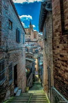 Through Urbino