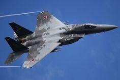 JASDF F-15