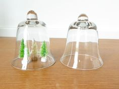 Two small glass cloches or display domes for by Sweetpotatojack