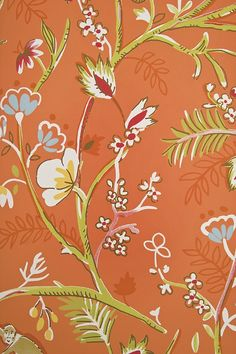Guadeloupe Floral Wallpaper Coral Orange wallpaper with wild jungle fauna design in pale green, reds and blues. complete with the odd monkey!