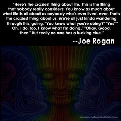 A Few Joe Rogan Quotes To Help You Get Introspective About Life - Caveman Circus Joe Rogan Quotes, Ju Jitsu, Rare Words, Character Quotes, Word Nerd, Motivational Words, I Feel Good, What Is Life About, Poetry Quotes