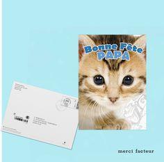 Cette carte plait beaucoup !  Vous aussi vous pouvez l'envoyer en quelque clics...   #Papa #Père #FêtedesPères #carte #postale #Photo #chaton #JeudiPhoto