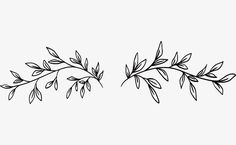 Vine Tattoos, Body Tattoos, Flower Tattoos, Tattoo Sketches, Tattoo Drawings, Vine Drawing, Bullet Journal Art, Painted Leaves, Tattoos For Women Small