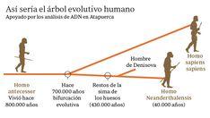 El ADN cierra interrogantes sobre el origen del hombre de Atapuerca Max Planck, Historia Universal, Human Evolution, Chart, Life, Google, Maps, Human Being, Dna