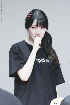 Pop Group, Girl Group, Rat Family, G Friend, Little Pigs, Cute Asian Girls, Girl Day, Meme Faces, Korean Beauty