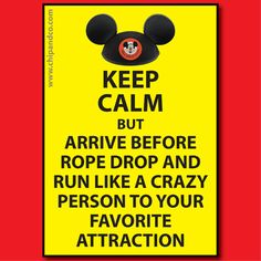 Try to keep calm but arrive before rope drop and run like a crazy person to your favorite attraction - PETER PAN! :)