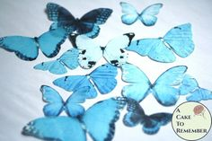 12 large icy blue wafer paper edible butterflies for cakes Spring Cake, Summer Cakes, Fall Cakes, Wafer Paper Flowers, Paper Butterflies, Cake Decorating Tutorials, Cookie Decorating, Decorating Ideas, Butterfly Wedding Cake