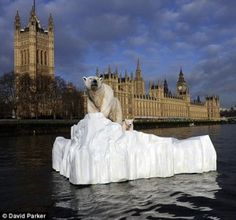 STUNT: A 'polar bear' is seen floating down the River Thames to launch TV channel Eden.