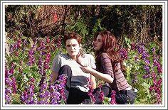'Breaking Dawn Part Behind the Scenes. Twilight New Moon, Twilight Movie, Twilight Saga, Breaking Dawn Part 2, Edward Bella, Robert Pattinson And Kristen, Twilight Photos, Bts, Book Fandoms