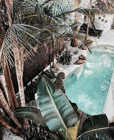 "oceaniatropics: ""cactus rose villa, byron bay, nsw, australia, by kirstycane "" Bali, Design Patio, Dark Paradise, My Pool, Outdoor Living, Outdoor Decor, Tropical Vibes, Landscape Illustration, Illustration Art"