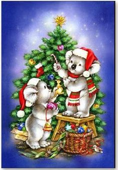 Christmas cards from australia christmas cards cards and merry christmas koala m4hsunfo Choice Image