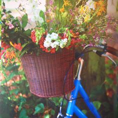 Selina Lake Outdoor Living Book - Bike & Basket of Flowers