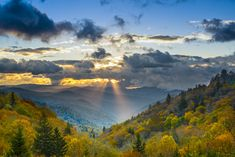 Fall in the Great Smoky Mountains National Park.