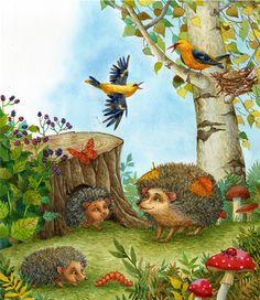 Main 393055 original Hedgehog Colors, Hedgehog Art, Woodland Art, Mushroom Art, Renaissance Paintings, Forest Art, Cute Clipart, Pen And Watercolor, Butterfly Art