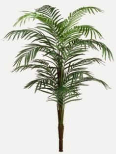 """Living room with turauoise theme  PA1308-GR  96"""" Areca Palm Tree x15 w/491 Lvs."""