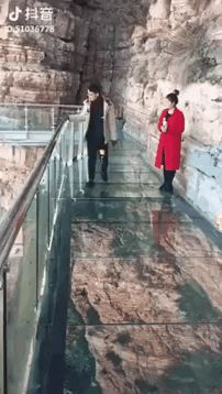 Мост / АйДаПрикол :)