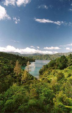 Malborough Sounds, New Zealand