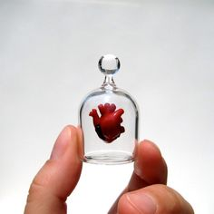 Anatomical Heart in a Jar, Hand Blown Glass Miniature, Anatomically Correct Heart by kivaford on Etsy https://www.etsy.com/listing/66269106/anatomical-heart-in-a-jar-hand-blown