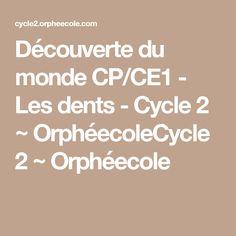 Découverte du monde CP/CE1 - Les dents - Cycle 2 ~ OrphéecoleCycle 2 ~ Orphéecole