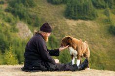 Orthodox monk with dog