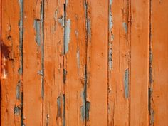 painted wall ♥* l ̲̅ə̲̅٨̲̅٥̲̅٦̲̅]'*♥ ♥* l ̲̅ə̲̅٨̲̅٥̲̅٦̲̅]'*♥ Orange Is The New, Orange Grey, Green And Purple, Orange Color, Orange Aesthetic, Aesthetic Vintage, Pretty Pictures, Pretty Pics, Western Photography