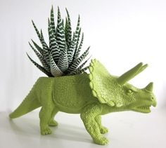 dinosaur plant pot.  Could be a diy project.