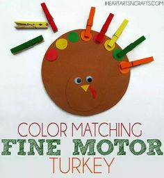 Fine Motor & Color Matching