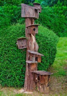 La madera de la familia de casa para pájaros Foto de archivo - 14227333