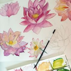 Painting some Lotus flowers that might be useful for a custom order for a shop banner I am working on   #designer #graphicdesign #instaartist #banner #logo #custom #lotus #lotusflower #flower #watercolor #clipart #painting #pretty