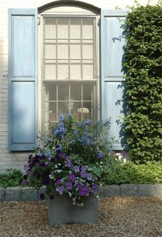 Tara Dillard: Color, Contrast (arch of window - square of pot, no foundation planting, vertical lawn, gravel, cobblestone edging