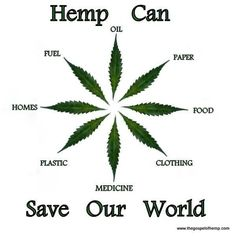 Hemp Can Save Our World | No wonder corporations have been and still are fighting so hard to keep this plant illegal.