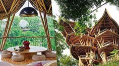 Les maisons écologiques en bambou de Elora Hardy - Et si le bambou était le matériau écologique de l'avenir ? Résistant, léger, bon marché, il trouve une utilité dans une foule d'objets du simple vélo aux plus grandes constructions.