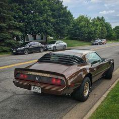 1979 Pontiac Firebird Trans Am Pontiac Cars, Chevrolet Camaro, Pontiac Firebird 1970, Toyota Trucks, Pony Car, Cars And Coffee, Mustang Cars, Unique Cars, American Muscle Cars
