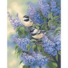 <li>Create a magnificent work of art with this paint by number kit from Dimensions <li>Paint set features an adorable image that can be reproduced using a few easy techniques <li>Craft painting kit offers a colorful image with small birds and lilacs