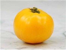 Barnes Mountain Yellow Tomato