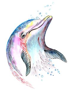 Dolphin Source by Giraffenauge Dolphin Drawing, Dolphin Painting, Dolphin Art, Watercolor Pencil Art, Watercolor Fish, Watercolor Paintings, Watercolor Tattoo, Animal Drawings, Cute Drawings