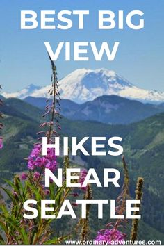 Where to hike for the best big views from the trail near Seattle. Backpacking Trails, Hiking Spots, Mt Rainier National Park, Grand Canyon National Park, Camping In Washington, Washington State, Living In Alaska, Hiking Guide, Washington