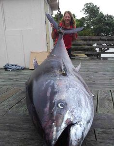 56 Year Woman Caught a Fish Weighing More Than 400 kg
