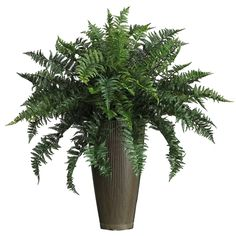 Nearly Natural Ruffle Fern w/Decorative Vase Silk Plant (Indoor/Outdoor) Large Indoor Plants, Small Artificial Plants, Indoor Flowers, Fake Plants, Outdoor Plants, Artificial Flowers, Indoor Outdoor, Green Plants, Hanging Plants