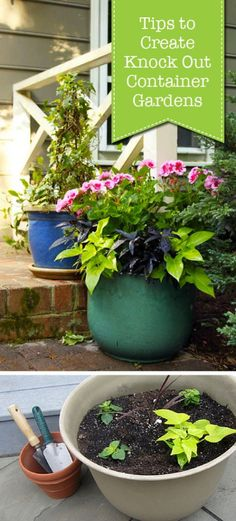 Container Gardening For Beginners Tips to Create Knock Out Container Gardens - Pretty Handy Girl - Great a outdoor space with these easy tips for container gardening. Container Herb Garden, Container Gardening Vegetables, Container Plants, Vegetable Gardening, Container Flowers, Growing Tomatoes In Containers, Growing Vegetables, Gardening For Beginners, Gardening Tips