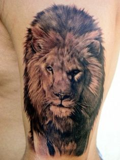 A life like #lion #tattoo    this is so intense!