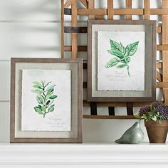 Add some flavor to your kitchen with this Oregano & Basil Framed Art Print Set! These prints feature two favorite herbs, giving a fresh accent to your wall. Framed Wall Art, Framed Art Prints, Wall Art Decor, Plant Art, Modern Farmhouse Decor, All Wall, Botanical Prints, How To Dry Basil, Wood Art