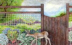 Critter-proofing your garden - illustration of fence for keeping deer out of the garden